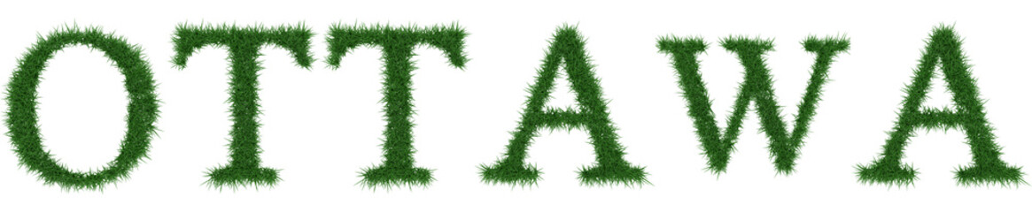 Ottawa - 3D rendering fresh Grass letters isolated on whhite background.