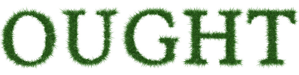 Ought - 3D rendering fresh Grass letters isolated on whhite background.