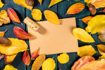 Autumn wine design template with cork and leaves