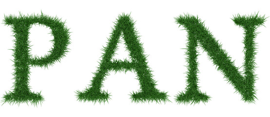 Pan - 3D rendering fresh Grass letters isolated on whhite background.
