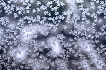 frosty picture on glass