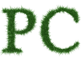 Pc - 3D rendering fresh Grass letters isolated on whhite background.
