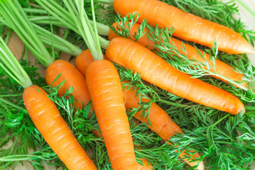 Bunch of fresh carrots on wooden background