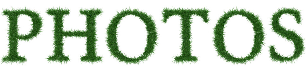 Photos - 3D rendering fresh Grass letters isolated on whhite background.