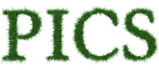 Pics - 3D rendering fresh Grass letters isolated on whhite background.