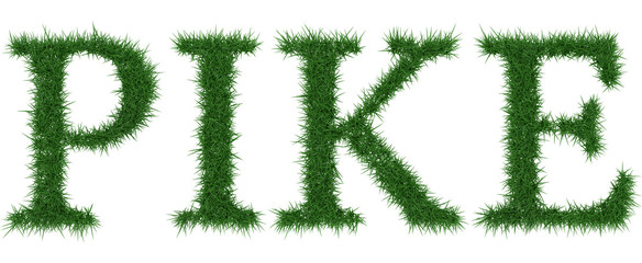 Pike - 3D rendering fresh Grass letters isolated on whhite background.