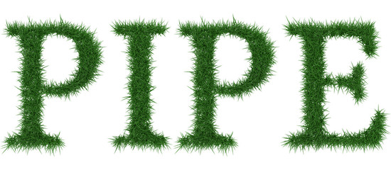 Pipe - 3D rendering fresh Grass letters isolated on whhite background.