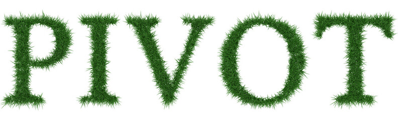 Pivot - 3D rendering fresh Grass letters isolated on whhite background.
