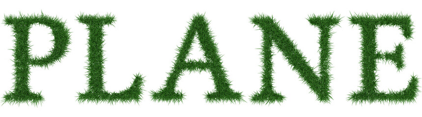 Plane - 3D rendering fresh Grass letters isolated on whhite background.