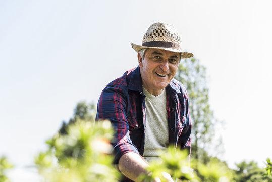 Portrait of smiling senior man in garden