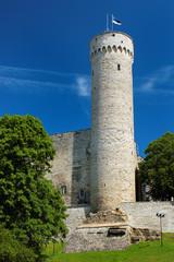 Estonian flag on Tall Hermann Tower on Toompea Hill in the Old Town of Tallinn, Estonia