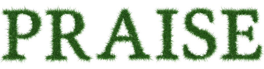 Praise - 3D rendering fresh Grass letters isolated on whhite background.