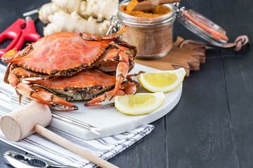 Crab Festival. Steamed crabs with spices. Maryland blue crabs.