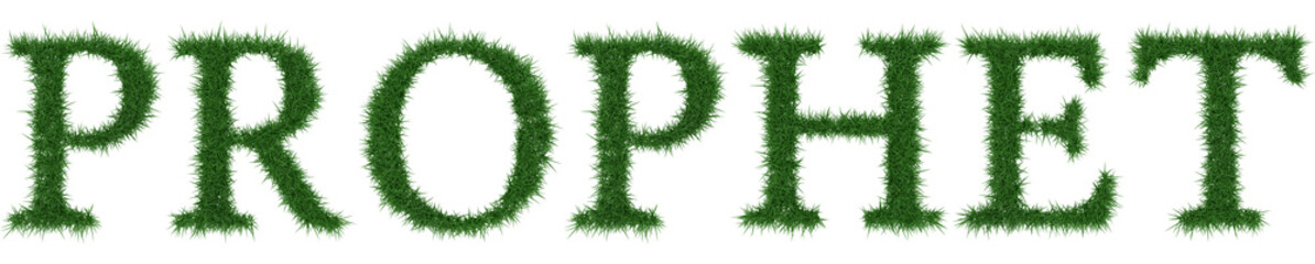 Prophet - 3D rendering fresh Grass letters isolated on whhite background.
