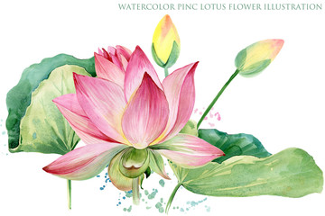 pink lotus border. watercolor botanical illustration.