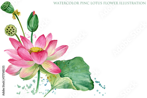 Pink Lotus Border Watercolor Botanical Illustration Stock Photo
