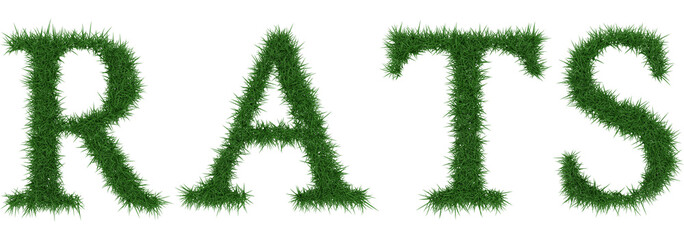 Rats - 3D rendering fresh Grass letters isolated on whhite background.