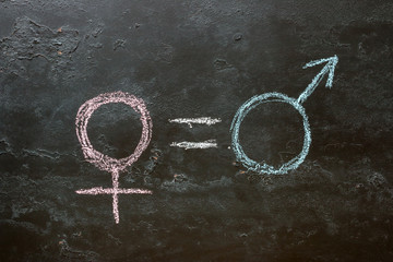 The female gender symbol is equal to the male concept of gender equality