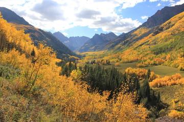 Fall Colors Aspen, Colorado
