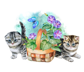 Kittens and a flower basket. Flowers Moning glory. Watercolor. Illustration. Handmade.  Suitable for design of cards, textiles