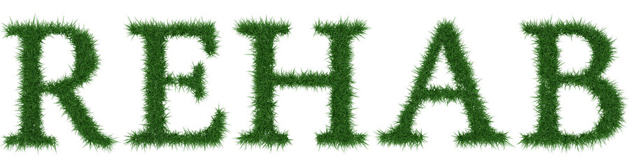 Rehab - 3D rendering fresh Grass letters isolated on whhite background.