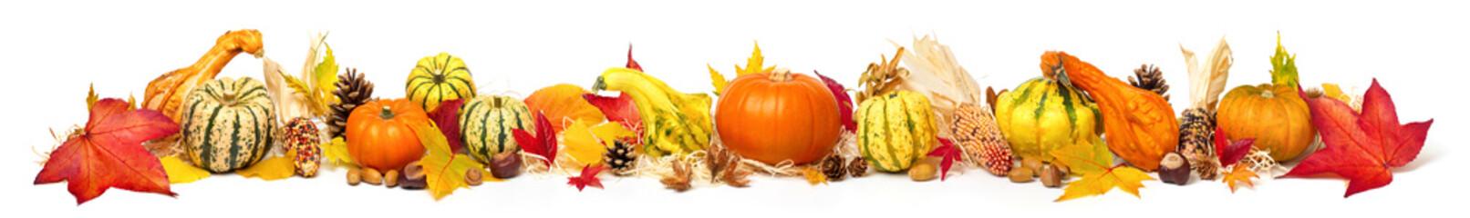 Buntes Arrangement für Herbst, isoliert auf Weiß, Panorama Format