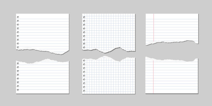 Set of Vector Illustrations of torn pages of notebook paper lined and square