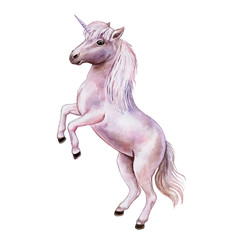 Pink unicorn isolated on white background. Watercolor, illustration, image for print, poster, textile, clothing design