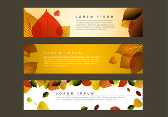 Autumn Web Banners Layout 1
