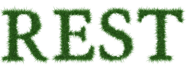 Rest - 3D rendering fresh Grass letters isolated on whhite background.