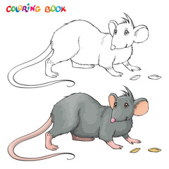 Vector Coloring book for children with rat.