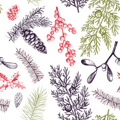 Vector pattern with hand-drawn Christmas plants .