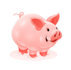 Pink piggy young cartoon animal, isolated white background.