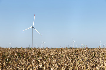 Wind Turbine Field Axis