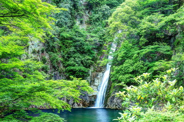 布引の滝 雌滝