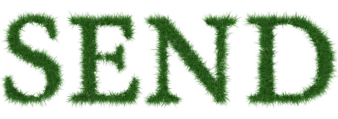 Send - 3D rendering fresh Grass letters isolated on whhite background.