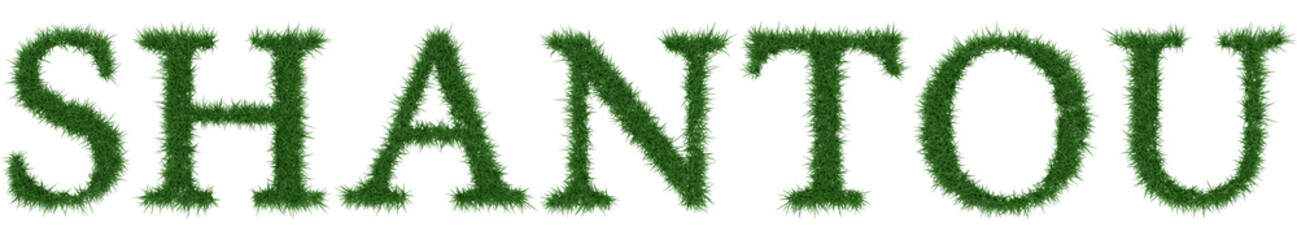 Shantou - 3D rendering fresh Grass letters isolated on whhite background.