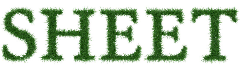 Sheet - 3D rendering fresh Grass letters isolated on whhite background.