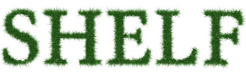 Shelf - 3D rendering fresh Grass letters isolated on whhite background.