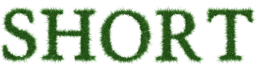 Short - 3D rendering fresh Grass letters isolated on whhite background.