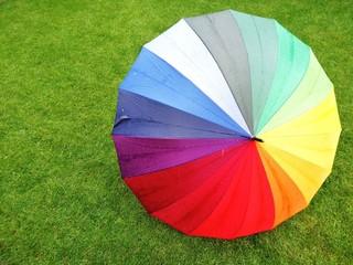 Rollrasen / Regenschirm / Textur
