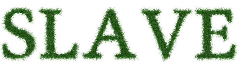 Slave - 3D rendering fresh Grass letters isolated on whhite background.