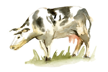 Watercolor spotted cow
