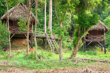 Tourist huts on the outskirts of the jungle near Bau Sau (Crocodile Lake)   in Cat Tien National Park, Vietnam, Asia.