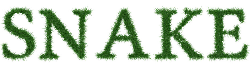 Snake - 3D rendering fresh Grass letters isolated on whhite background.