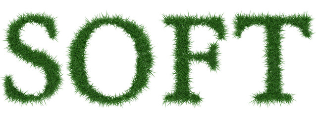Soft - 3D rendering fresh Grass letters isolated on whhite background.