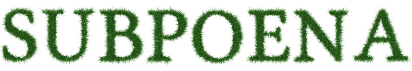 Subpoena - 3D rendering fresh Grass letters isolated on whhite background.