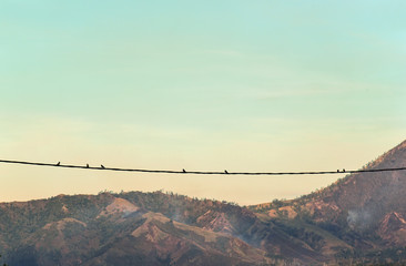A silhouette of birds on wires near Kawah Ijen