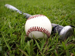 Baseball and a baseball bat