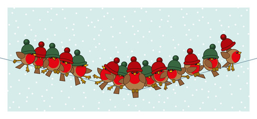Robins wearing Red Green Woolly Bobble Hats on Telephone Wire